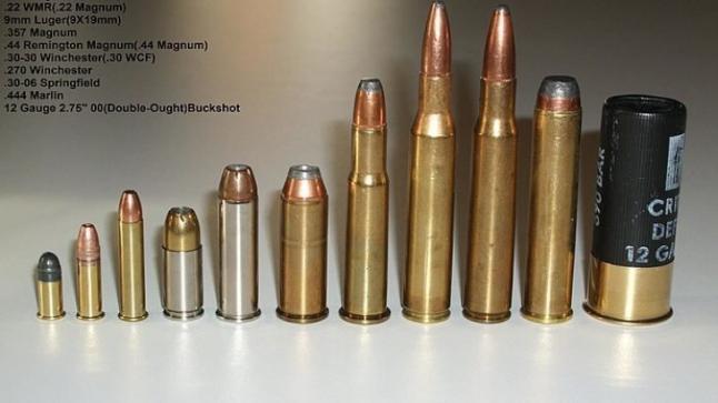 الإعلان عن اكتشاف خط لتهريب الأسلحة من السنغال عبر موريتانيا