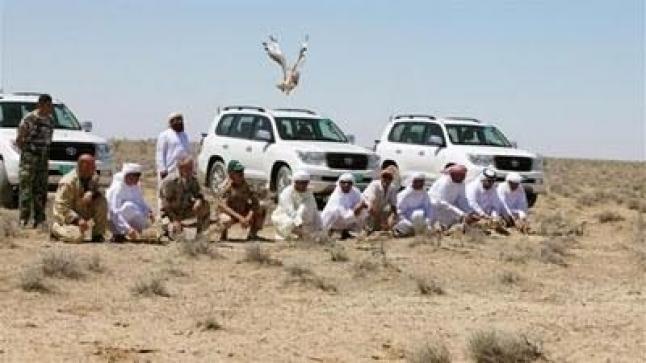أمراء سعوديون وقطريون وإماراتيون يتقاطرون على جنوب المغرب لصيد الصقور والنسور والحبار.. وهذه هي التفاصيل!