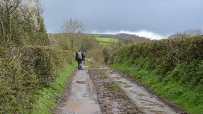رغم الحجر الصحي.. علماء آثار يكتشفون عشرات المواقع الأثرية في بريطانيا